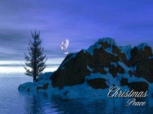 Christmas-Peace 2